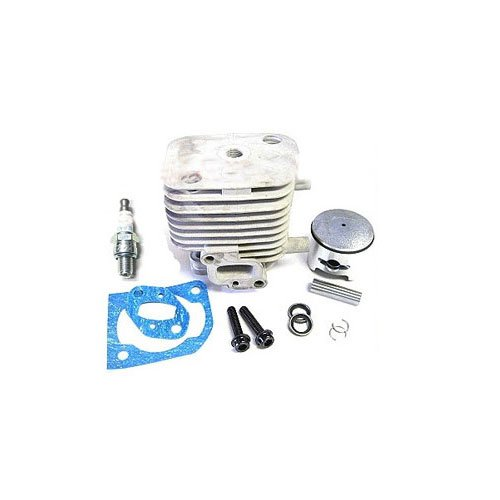 ESP Race geporteter GP290 Motor 36mm Zylinder Kit